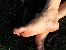 230px-Picture_of_foot